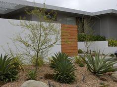 manzanita tree in drought tolerant front yard garden via gardenista - Spiky, sculptural agaves and Palo Verde trees, both California native species