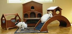 indoor rabbit housing - love the bridge and so do bunnies Bunny Cages, Rabbit Cages, Rabbit Toys, Bunny Toys, Bunny Rabbit, Bunnies, Indoor Rabbit House, House Rabbit, Vivarium
