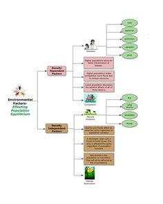 Environmental Science Series Biozone Science Teaching Stuff