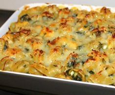 Gratin chou kale au cheddar by malutin68 on www.espace-recettes.fr