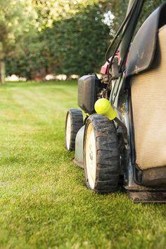 Lawn care checklist