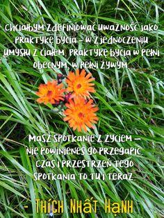 Thich Nhat Hanh, Zen, Herbs, Herb, Medicinal Plants