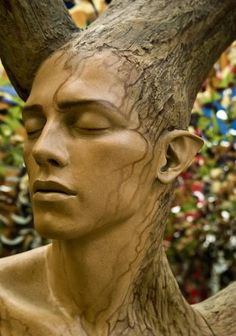 Sculpted Wood Elven Head - or is it a carving at all? Where did the Elves vanish to in the latter Ages of Arda? do you only see trees? d;-)