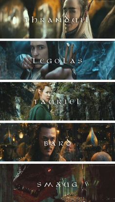 The Hobbit: Desolation of Smaug... Soo many attractive people....