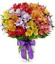 Peruvian Lily Rainbow Bouquet of alstroemeria in yellow, purple, orange, red and hot pink in a clear vase with a pretty ribbon bow. Get Well Flowers, Flowers For You, Fresh Flowers, Spring Flowers, Beautiful Flowers, Beautiful Bouquets, Beautiful Pictures, Rainbow Bouquet, Contemporary Flower Arrangements