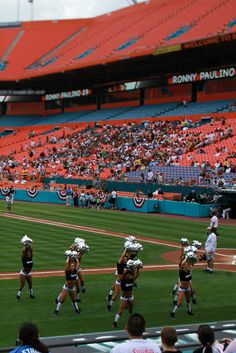 Perfect Marlins/Dolphins, Sun Life Stadium   Miami Gardens, Florida