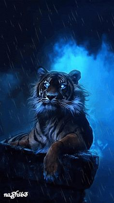 Demonic Tiger!