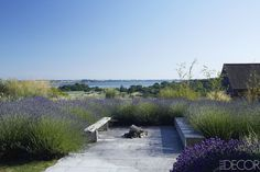 Garden Terrace - ELLEDecor.com