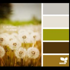 Color scheme ideas for living areas. ⤑ light gray, white, natural green, brown, light brown.