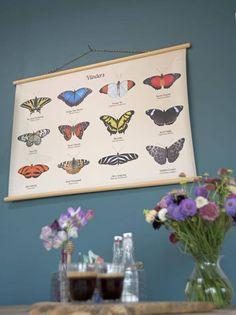 Schoolplaat Vlinders - Lekker Retro