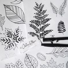 Monday morning sneak peek into the studio...a new collection in the making. Happy Monday!  #art #design #illustration #autumn #leaves #ferns #acorns #doodles #pen #ink #pattern #clairewilsondesigns #makeitindesign #surfacepatternecourse #abspdupb