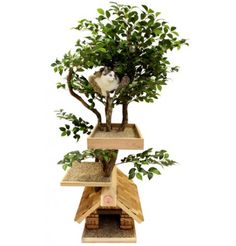 Cat Tree Furniture With Leaves: A Realistic Cat Tree To Enhance Your Home Decor. Can't You See Your Kitty Hiding Out In These Branches?
