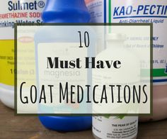 A well stocked medical cabinet is a must have when it comes to owning goats. You never know when sickness will hit and what goat medications you will need to fix it. Most supplies have a pretty long shelf life- but even if they only last a year, it is better to have them on hand than to risk loosing your goats!