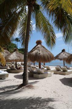Damsel in Dior Work Travel, Island Beach, Dior, Florida, Patio, Explore, Places, Outdoor Decor, Destinations