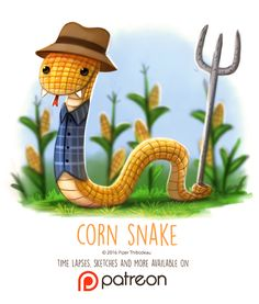 Day Corn Snake by Piper Thibodeau on ArtStation. Cute Animal Drawings, Animal Sketches, Kawaii Drawings, Cute Drawings, Anime Animals, Cute Animals, Animal Puns, Animal Food, Corn Snake