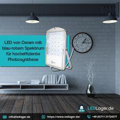 Für weitere Informationen - oder Tel. +49 (0) 711 21724377 . #ledlights #led #decorations #lights #ledlager #decoration #germany #interiordesign #decorstyle #lightshow #decoración #LEDLichter #led #LEDLicht #Wohnkultur #ledlights #home #instagood #homedesign #ledheadlights #DecorativeLighting #lightingsolutions #lightingdesign #interiordesign #interiorism #modernlighting Home Design, Led Licht, Interiordesign, Red, Blue, Photosynthesis, Lights, Home Designing, House Design