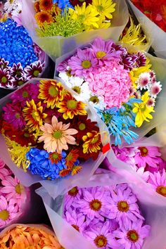 Beautiful Cut Flower Bouquets!