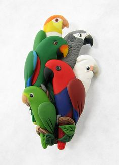 A green-rumped parrotlet, two Eclectus, a goffins cockatoo, a african grey and a caique... so neat!