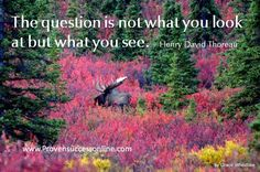 The question is not what you look at but what you see. - Henry David Thoreau