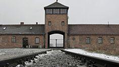 In ricordo delle vittime del nazismo