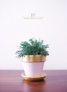 DIY // Painted Terra Cotta Pots | Oh So Pretty Blog