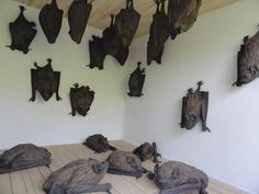 Art discovered bat: Swiss artist Rochus Lussi and his wooden bats