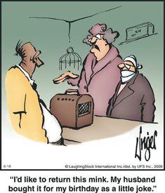 Herman Cartoon, Herman Comic, Funny Long Jokes, Snail, Comic Strips, English Language, Puns, Yoga Poses, Laughter