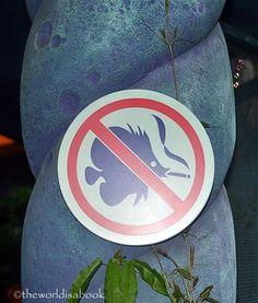 No Smoking sign at Mermaid Lagoon #Tokyo DisneySea #disneysea