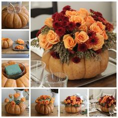 Možno sa vám zvýšila tekvička po Halloweene a neviete čo s ňou. Môžete sa inšpirovať týmito nápadmi a z tekvice si vyrobiť krásnu vázu na kvety. Spolu s kvetmi to vyzerá úžasne.