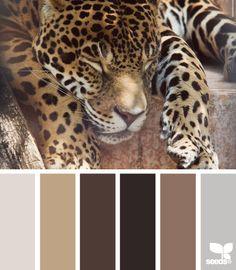 jaguar vs leopard vs cheetah animal print chart. people ...