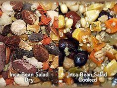 All Parrot Products  - Higgins Bird Food Inca Bean, $3.95 (http://www.allparrotproducts.com/higgins-bird-food-inca-bean/)