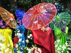 pretty colors/umbrella's