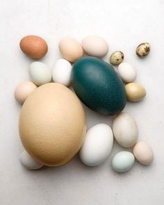 Eggshells    Use: To control blossom end rot.  How to make it: Take the shells of four eggs and crush them. Mix these shells into the soil around each plant.  Why it works: The calcium in eggshells will dissolve slowly into the soil, where it will be taken up by the plant's roots.