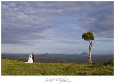 If we get married in Maleny, I want a photo at one tree hill!