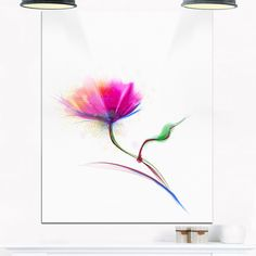 Isolated Purple Poppy Flower - Flower Glossy Metal Wall Art