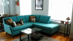 Joybird Ryder Sectional with Bumper from Jamie R.