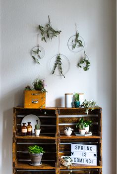 Wall decoration with metal rings and plants. Plus: decorating a shelf with plants! #plants #urbanjungle