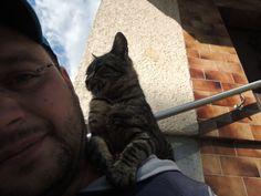 The cat loves me:))))