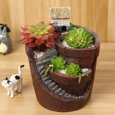 Hanging Garden Potted Micro Landscape Meat Plant Pots Small House Resin for sale online Indoor Fairy Gardens, Mini Fairy Garden, Garden Items, Garden Pots, Sky Garden, Small Plants, Potted Plants, Planting Succulents, Planting Flowers