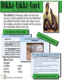 "FREE! Grab this free vocabulary PowerPoint and teach your students some important Tier II vocabulary words before your read ""Rikki-tikki-tavi."" Guaranteed to be a hit!"