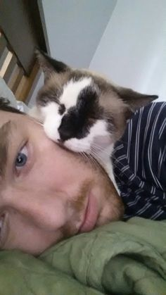 She likes to sleep on my facehttp://cute-overload.tumblr.com