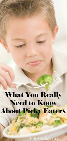 What You Really Need to Know About Picky Eaters.    #ElizabethPantley #NoCrySolution #Food #PickyEating #HealthyFood #Breakfast #Lunch #Dinner #Snack #Pregnancy #Mom #Dad #Parents #First #MomLife #DadLife #LookAtThatFace #Kids #Beautiful #Parenting #Relationships #Value #Family #Love #Happy #Gentle #Nurturing #Support #Comforting  #FoodPics #Yummy #Cook #Cooking