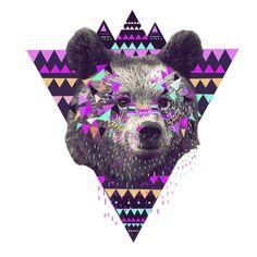 bear, illustration,