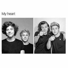 Discovered by Larry_gallavich. Find images and videos about one direction, niall horan and Harry Styles on We Heart It - the app to get lost in what you love. Four One Direction, One Direction Images, One Direction Wallpaper, One Direction Humor, Direction Quotes, James Horan, Liam Payne, Louis Tomlinson, Niall Und Harry