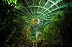 "steampunktendencies: "" The Royal Greenhouses of Laeken (Dutch: Koninklijke Serres van Laken, French: Serres Royales de Laeken), are a vast complex of monumental heated greenhouses in the park of the..."