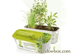 Bring the taste of Tuscany to your kitchen with out Herbs of Tuscany Grow Kit. This indoor container garden comes with everything you need to grow organic, GMO-free sweet marjoram, sage, and garlic chives.