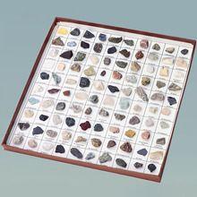 Rocks and Minerals of the United States #carolinaextracredit  @Carolina Krupinska Biological Supply Company