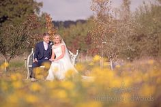 Couple on bench at Holme for Gardens Dorset wedding. Photography by one thousand words wedding photographers