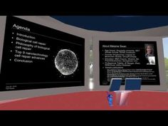 Video: 11th Terasem Annual Workshop on Geoethical Nanotechnology, Second Life, July 20 | TURING CHURCH