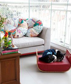Elegante, a cama do buldogue francês, foi comprada em uma loja de design, em São Paulo, pelo casal de proprietários, os publicitários Carlos e Ana Paula.
